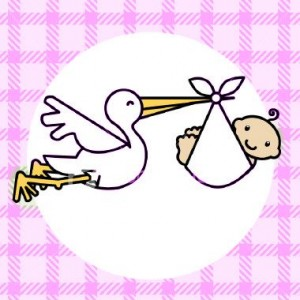 pink_stork24083504_std