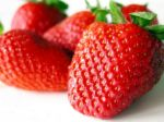 Free Strawberries at Safeway Chain of Grocery Stores