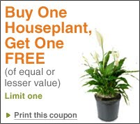 home depot garden coupon