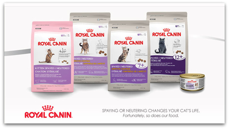 Dog food coupons 2018 uk