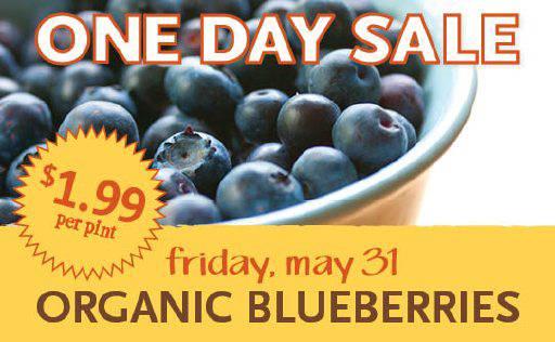 OneDaySale_OrganicBlueberries_WebGraphic_260x160
