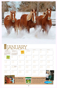 go.farnamhorse.com Calendar source nationalad