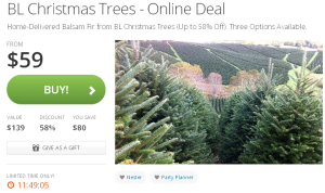 trees 300x178 Groupon Online Deals: Delivered Christmas Trees, Staples, and More! (Save Over $240!)