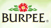 Burpee Burpee: FREE Shipping and $10 Off $40 Codes!