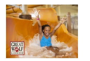 Reminder! Amazon Local is Offering Great Wolf Lodge Deals!  1 Night Stay for 5 From Just $159!