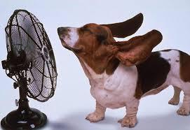 Cut Air Conditioner Costs