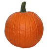 *HURRY!* $1 Pumpkins at Lowes!