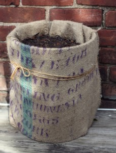 Burlap Paint Bucket Planter