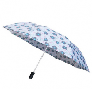 cute umbrella