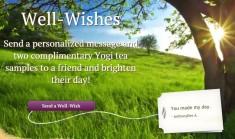 screenshot-www.yogiproducts.com 2016-03-18 09-42-43