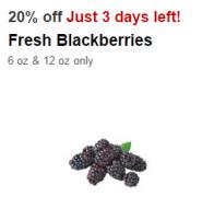 blackberry cartwheel
