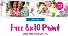 wg photo free 8 10